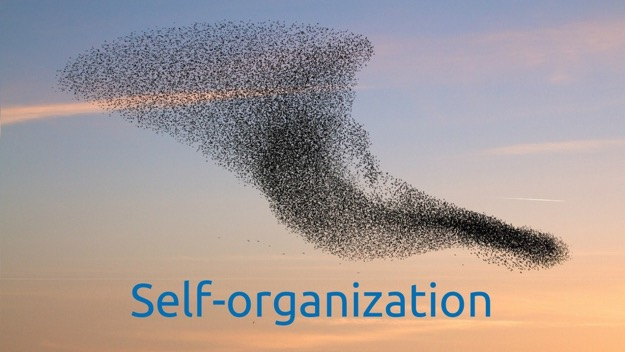 The Power of Self-Organization