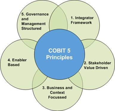 COBIT 5 Prinzipien