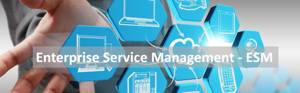 Mit Enterprise Service Management in die digitale Zukunft
